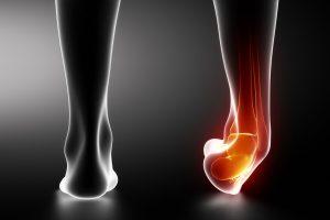 función del pie