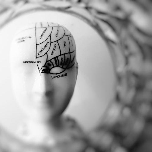 neurociencia tto dolor