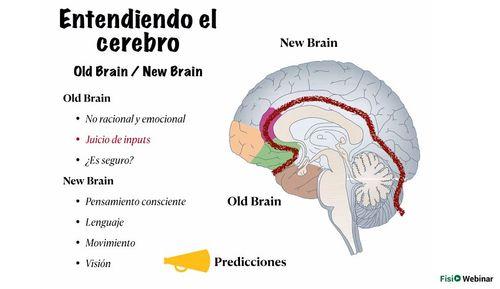 Neurociencia en el tratamiento del dolor