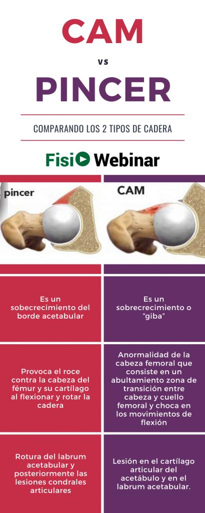PINCER vs CAM